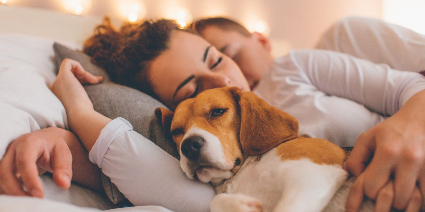 Young couple relaxing on the bed with her pet dog
