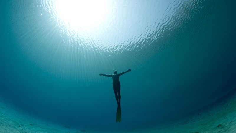 Image result for pictures of rising up out of water for breath