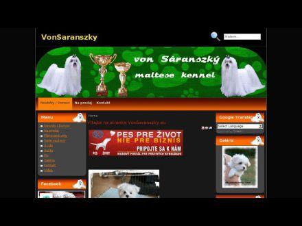 www.vonsaranszky.eu