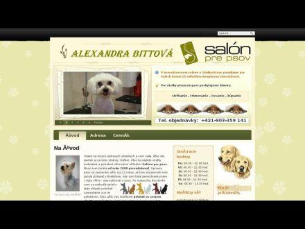www.absalon.sk