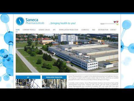 www.saneca.com