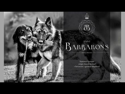 www.barbarons.sk