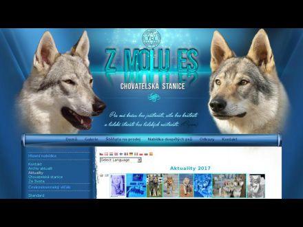 www.wolfdogs.cz