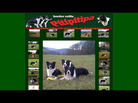 www.pitipitipa.cz