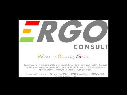 www.ergoconsult.sk