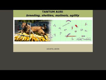www.agility-dogs.com