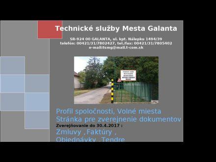 www.tsmg.sk