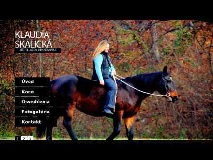 www.skalicka.sk